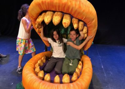 audrey II face 2 face summer camp