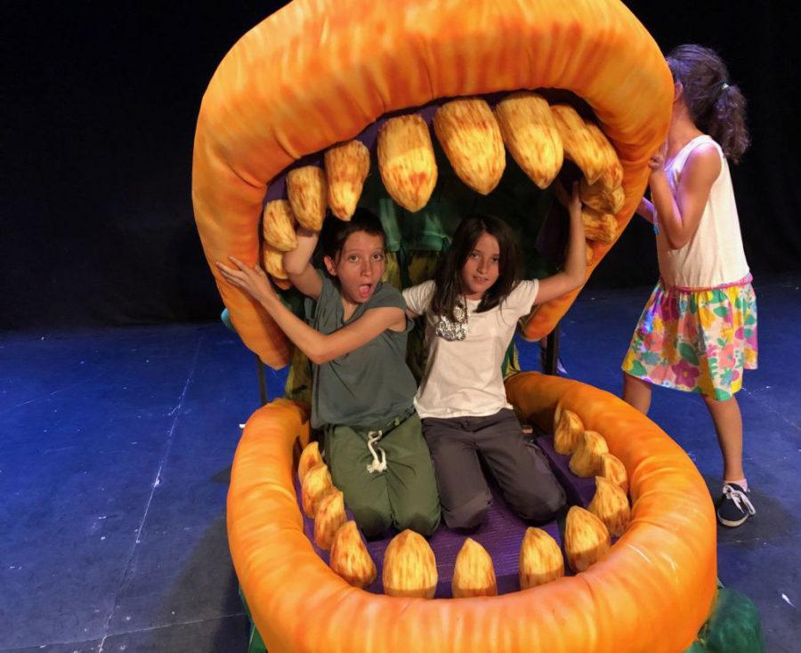 Niños disfrutando del campamento de verano de teatro en inglés