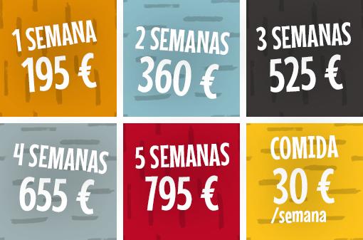 precios del campamento de verano summer camp 2020 de teatro en inglés en Madrid